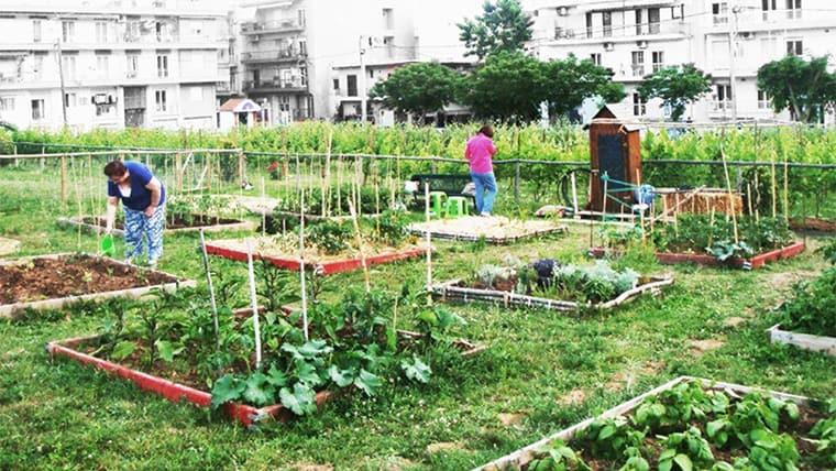 Αστικοί λαχανόκηποι στη Θεσσαλονίκη