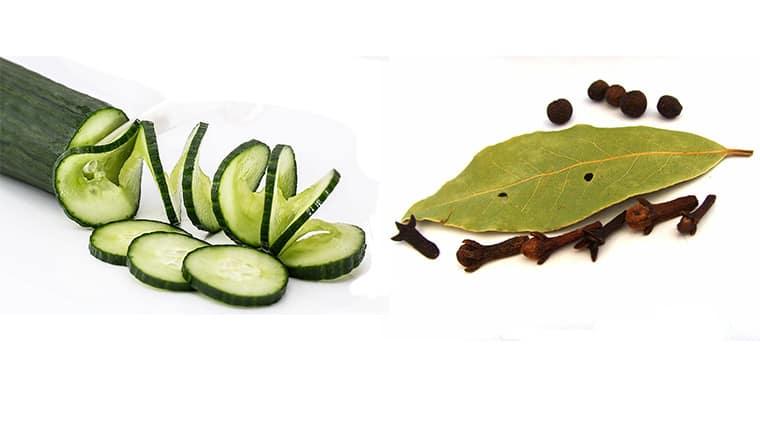 διώξτε τις κατσαρίδες οικολογικά