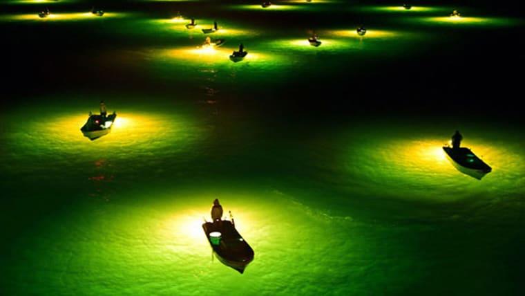 National Geographic | Οι 12 καλύτερες φωτογραφίες του 2015
