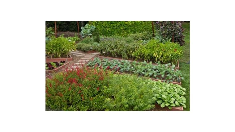 κήποι του Αγροκτήματος του ΑΠΘ