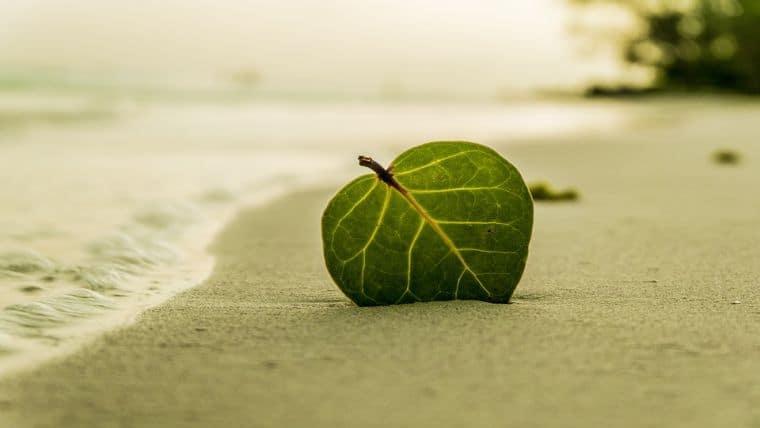 Οι 7 σημαντικές αλλαγές που οδηγούν στην αυτό-ίαση