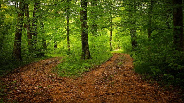Νιώστε τη φύση με όλες τις αισθήσεις