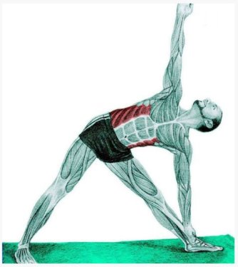 mys_yoga27