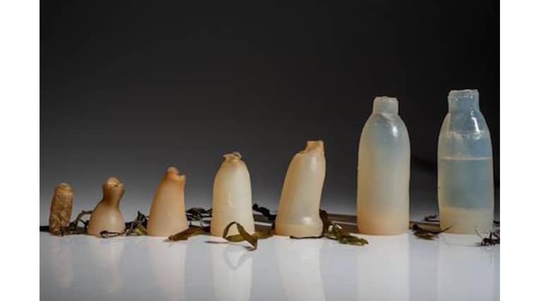 Οικολογικό μπουκάλι αυτοκαταστρέφεται μόλις αδειάσει