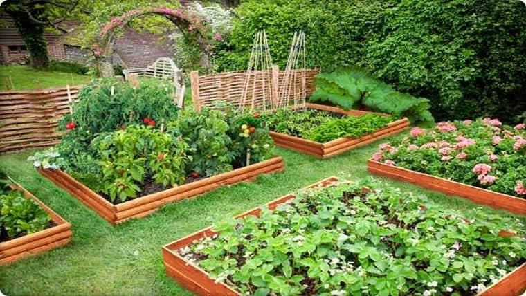 Παρτέρια | Ένας έξυπνος τρόπος για να καλλιεργείτε τα λαχανικά σας