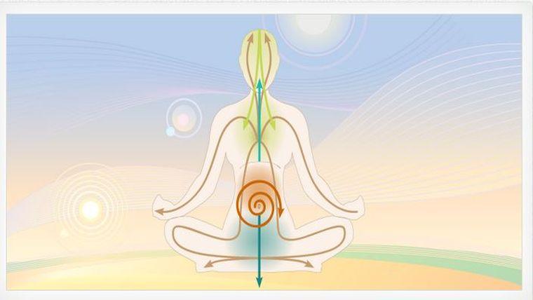 5 Vayus | Τα 5 ρεύματα της Πράνα & πως οργανώνουν τη φυσιολογία σου