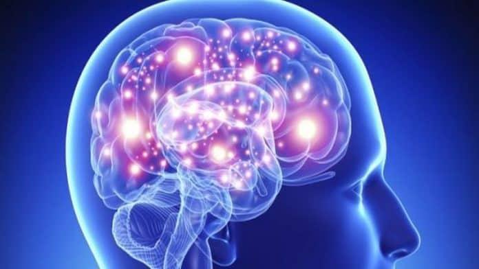 Βρετανοί επιστήμονες βρήκαν το κέντρο της γενναιοδωρίας στον εγκέφαλο