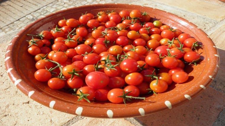 DIY Φτιάχνω σπιτική πάστα ντομάτας - ντοματοπελτέ