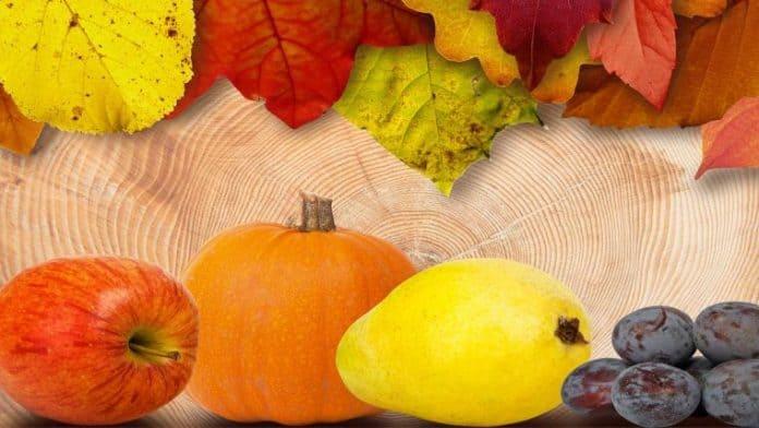 τα θρεπτικά φρούτα και λαχανικά του φθινοπώρου