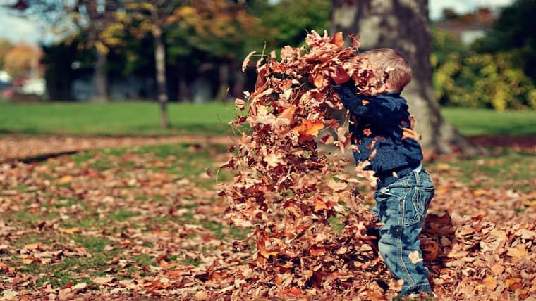 Κατά τα πρώτα μας χρόνια μάθαμε να ονειρευόμαστε για να χτίσουμε την ευτυχία μας. Τι μας εμποδίζει από το να συνεχίσουμε να χούμε έτσι;