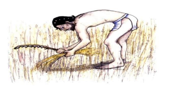 αρχαία διατροφή