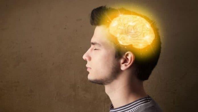 Μνήμη πώς ο νεανικός εγκέφαλος προετοιμάζει για την αυτονομία