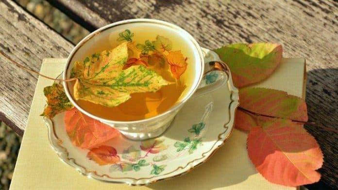 Φθινόπωρο – Απολαμβάνοντας τις εποχές με τη βοήθεια τις Κινεζικής Ιατρικής - Κατερίνα Σταθοπούλου