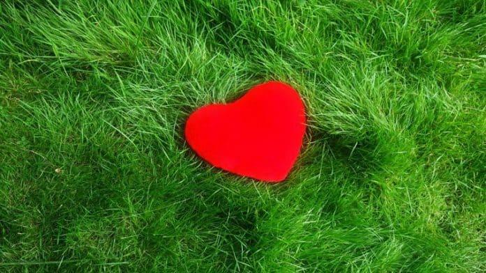 Τα 10 μυστικά της Καρδιάς