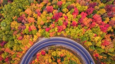 National Geographic | 15 υπέροχες φωτογραφίες αποτυπώνουν την ποίηση της φύσης 12