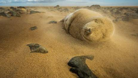 National Geographic | 15 υπέροχες φωτογραφίες αποτυπώνουν την ποίηση της φύσης 14