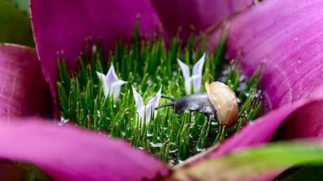 National Geographic | 15 υπέροχες φωτογραφίες αποτυπώνουν την ποίηση της φύσης 4