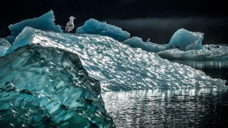 National Geographic | 15 υπέροχες φωτογραφίες αποτυπώνουν την ποίηση της φύσης 6