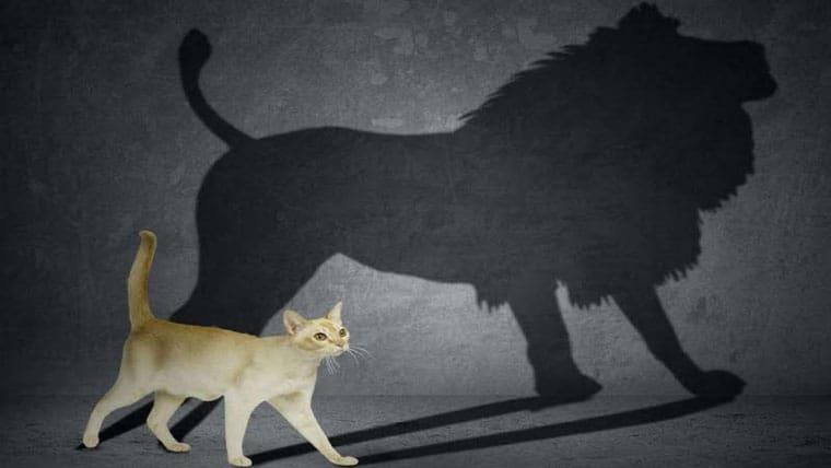 Τι μας ενισχύει και τι αποδυναμώνει την αυτοπεποίθηση μας