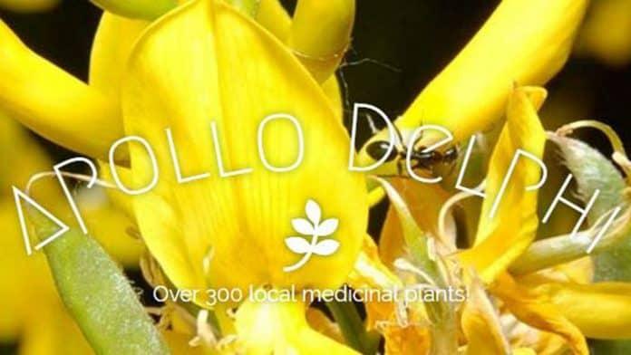 Apollo Delphi Botanic Garden | Ένας μοναδικός βοτανικός κήπος στις πλαγιές του Παρνασσού