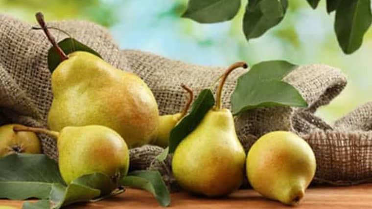Όμηρος: «Το Δώρο των Θεών» το φρούτο που μας προστατεύει από πολλές ασθένειες!