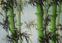 Κινέζικη αστρολογία | Μηνιαίες προβλέψεις Δεκεμβρίου - Της Μαρίας Κουκουβέ