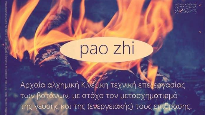 Pao Zhi | Η αλχημική μεταμόρφωση των βοτάνων - Της Ελευθερίας Μαντζώρου