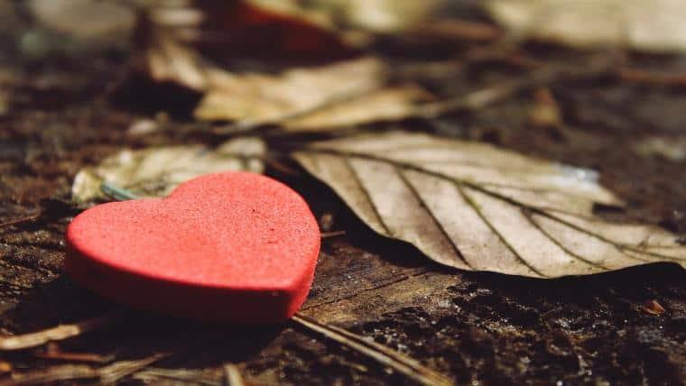 Πώς η ευγνωμοσύνη μπορεί να αλλάξει τη ζωή σας