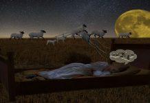 Πώς να μην ξεχνάμε τα όνειρά μας, όταν ξυπνάμε | της Κ. Ηλιοπούλου