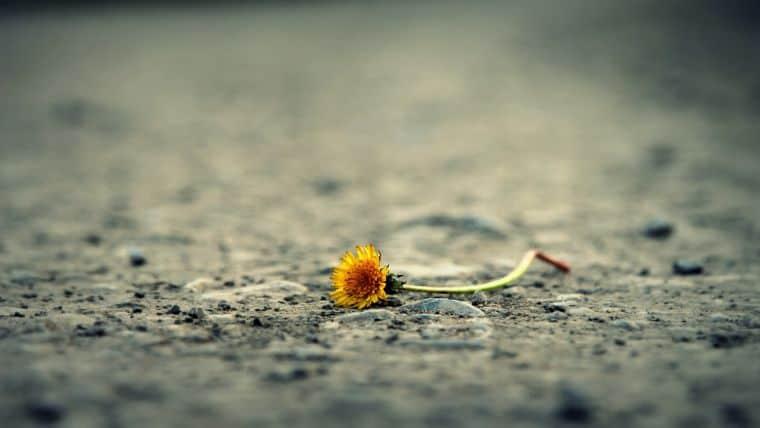 Συναισθηματικά τραύματα   Τα αναγνωρίζουμε και τα θεραπεύουμε! - της Όλγας Μουλάκη