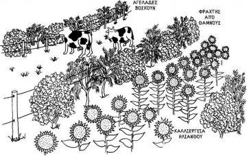 Εάν είστε γεωργοί | Ζώνη III Της Τίνας Λυμπέρη