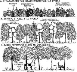 Δάση συγκομιδής | Ζώνη IV | Της Τίνας Λυμπέρη