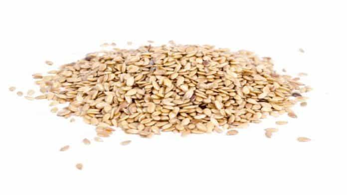 «Σουσάμι...άνοιξε» | Καλλιέργεια με μέλλον και υψηλά κέρδη το σουσάμι