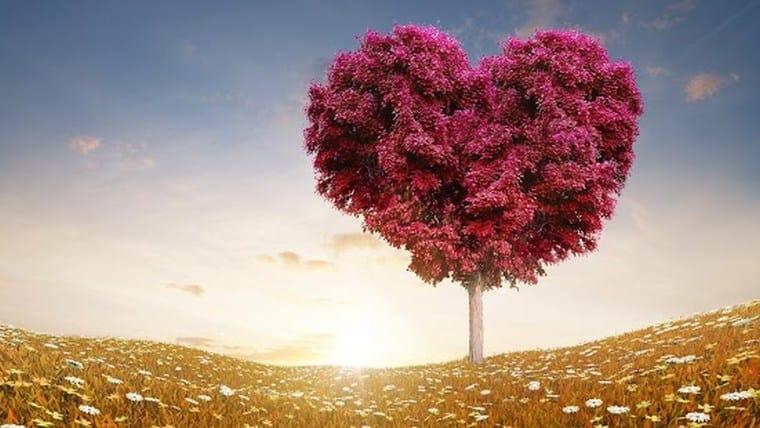 Τρόποι έλξης της αγάπης | Της Shakila Ιωάννας Μπράτη