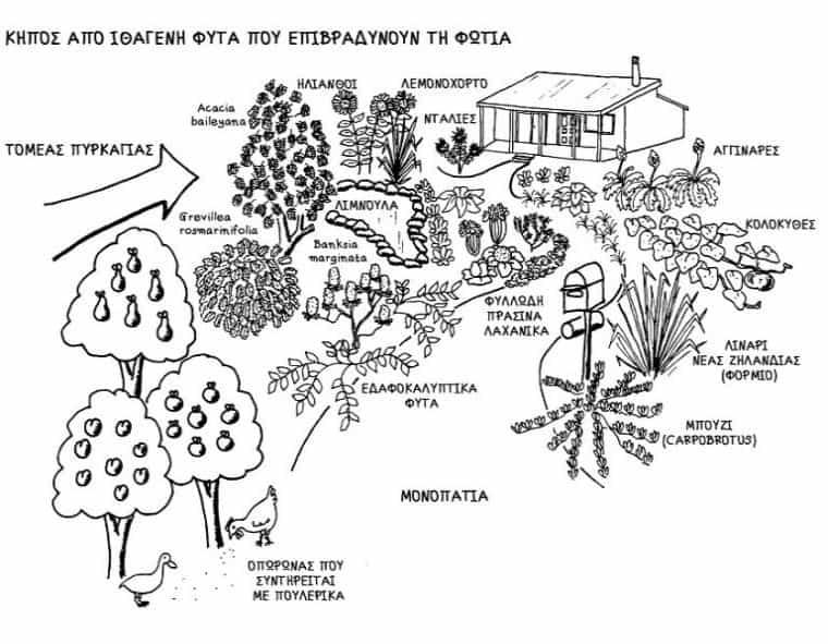 Σχεδιασμός για φυσικές καταστροφές - της Τίνας Λυμπέρη
