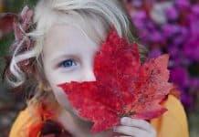 Φθινοπωρινές δραστηριότητες για σένα και το παιδί!