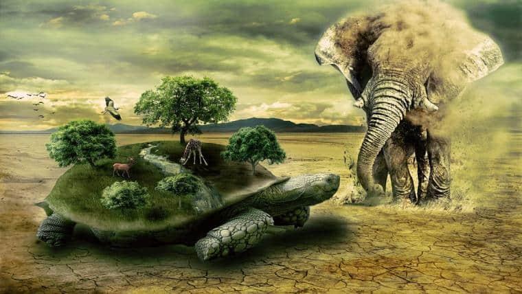 Οι χελώνες και το ταξίδι τους ή πώς οι χελώνες πρόφτασαν την άνοιξη…. - της Ζωής Νικητάκη