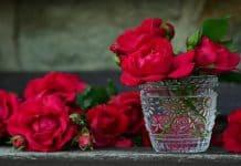 Τόνωσε την Καρδιά σου - της Μαριάννας Χρυσικάκου
