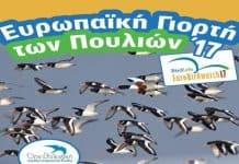 Eυρωπαϊκή γιορτή των πουλιών 2017   Γιορτάζουμε τη φθινοπωρινή μετανάστευση στον Υγρότοπο Βραυρώνας Αττικής