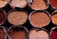 Οι φυτικές ίνες στη διατροφή μας - της Βασιλικής Ρούσσου