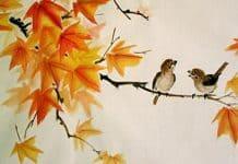Κινέζικη αστρολογία | Μηνιαίες προβλέψεις Οκτωβρίου - της Μαρίας Κουκουβέ