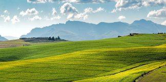 kκαλλιέργεια χωραφιού θρέφει