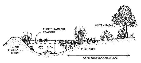 Υδατοκαλλιέργεια | Η περμακουλτούρα του νερού - της Τίνας Λυμπέρη