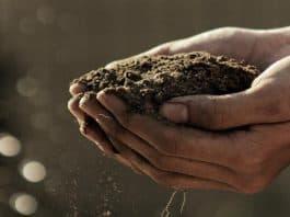 Αγροοικολογία: το μέλλον της γεωργίας; - του Τάσου Τσακάλη