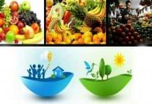 Η διατροφή του ανθρώπου και το μέλλον της πολιτείας - του Νίκου Γ. Δαφόπουλου