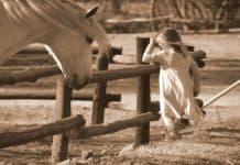 Η «δύναμη» της θεραπευτικής ιππασίας