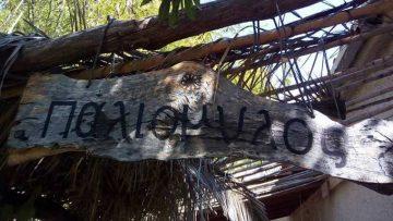 Μεσογειακή Περμακουλτούρα στην πράξη | Τίνα Λυμπέρη και Φωτεινή Γεωργούση