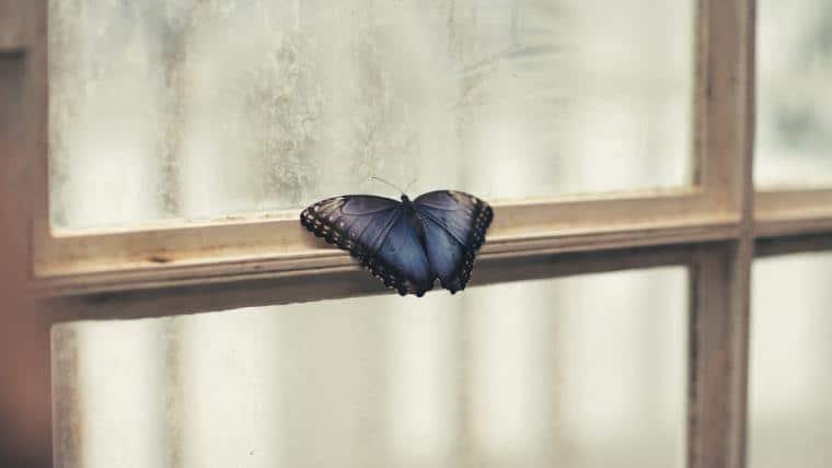 Ετοιμότητα για Αλλαγή | Δύο Βήματα, Τρία Σημεία Αλλαγής - του Στέφανου Βαούτη