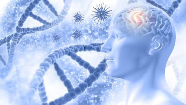 Το Ανθρώπινο Σώμα | Ένας Μεγάλος Άγνωστος - Του Αλέξανδρου Τηλικίδη