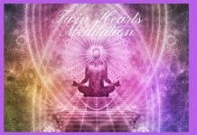 Twin Hearts Meditation | Anima Healing Center